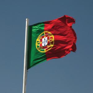 60anniversary-flag